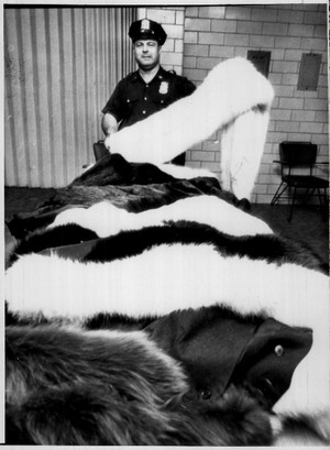 Los Angeles Police and New York Police made an inventory of Marilyn Monroe's furs and jewelry
