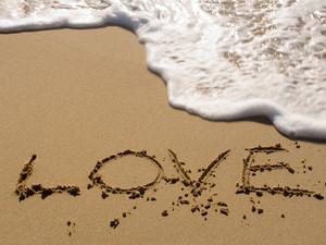 Love.............