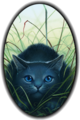 Bluestar of Thunderclan - make-your-own-warrior-cat photo