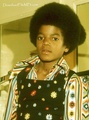 Michael :)) - michael-jackson-the-child photo