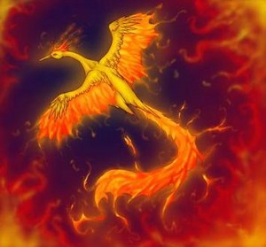 Moltres - Never Play With brand