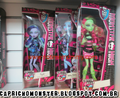 New Doll Lines - Credit to owner - monster-high photo