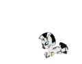 Zecora as a filly - my-little-pony-fim-fan-characters photo