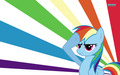 Rainbow Dash Wallpaper - my-little-pony-friendship-is-magic wallpaper