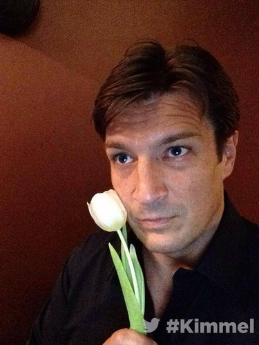 Nathan Fillion 壁纸 titled Nathan Fillion