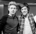 Niall and Harry  - niall-horan fan art