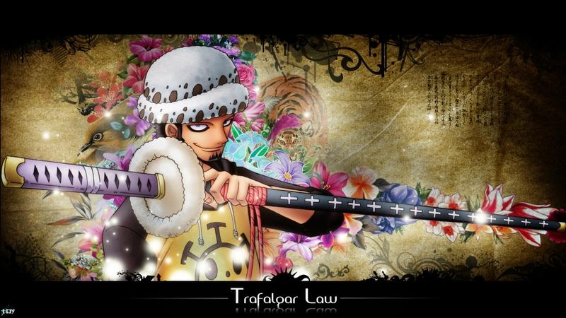 *Trafalgar Law*