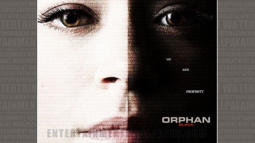 orphan black fondo de pantalla with a fuente called Orphan Black fondo de pantalla