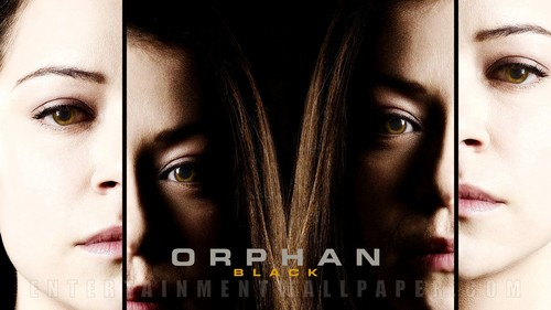 Orphan Black fond d'écran with a portrait entitled Orphan Black fond d'écran