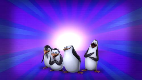 पेंग्विन्स ऑफ मॅडगास्कर वॉलपेपर titled The Penguins Of Madagascar