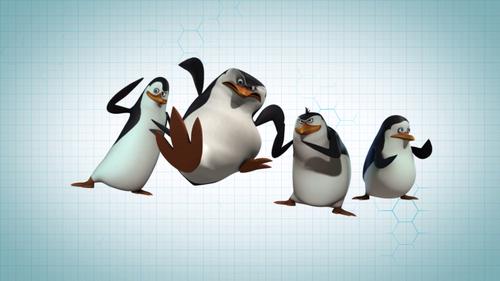 पेंग्विन्स ऑफ मॅडगास्कर वॉलपेपर called The Penguins Of Madagascar