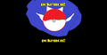 poke' ball - pokemon photo