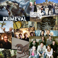 collage of good pics - primeval photo