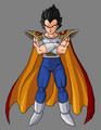 Prince Vegeta - prince-vegeta photo