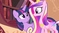 Princess Cadance and Princess Twilight
