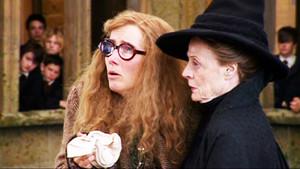 Trelawney and McGonagall