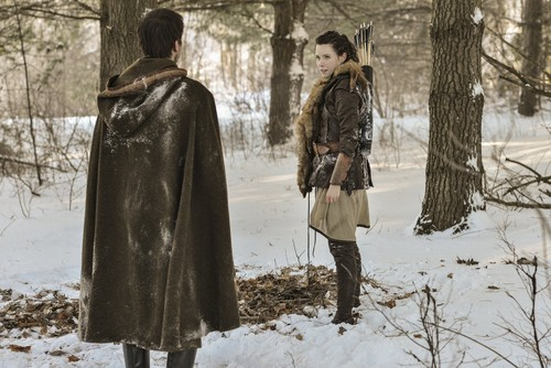 Reign [TV Show] fondo de pantalla with a pelaje, piel coat, a mink, and a capa titled Reign (1x14) - HQ fotos