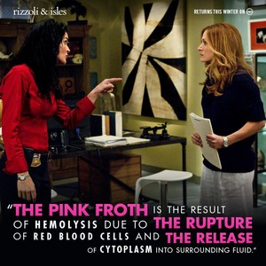 rizzoli and isles - maura's fun fact