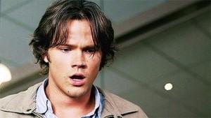 Sam Winchester ◇