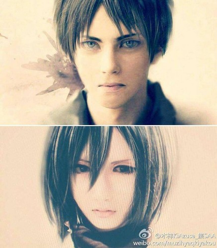 Shingeki no Kyojin (Attack on titan) wallpaper with a portrait titled Mikasa and Eren