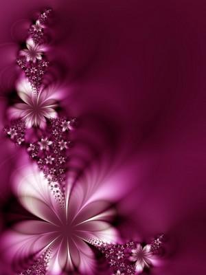 꽃 바탕화면