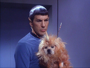 Star Trek Space Dog