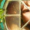 Bilbo Icon