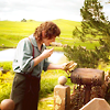 The Hobbit iconos