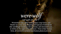 Werewolf           - the-vampire-diaries-tv-show fan art