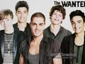 The Wanted <3 - the-wanted photo