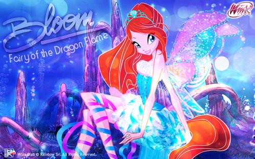 윙스 클럽 바탕화면 titled Bloom: Harmonix 바탕화면