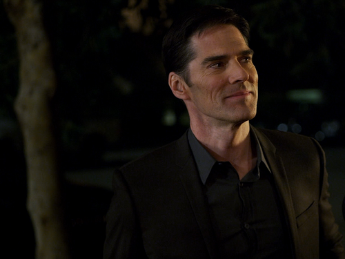 Thomas Gibson wallpaper containing a business suit called Thomas Gibson