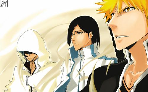 Uryu Ishida Hintergrund probably with Anime entitled Uryu Ishida and Ichigo Kurosaki