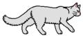 Woolstar (she-cat)