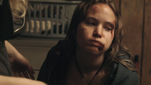 winter s bone Debra granik's impressive second movie, winter's bone, adapted from a novel by daniel woodrell, takes place in president truman's home state of missouri and down near the border of bill.