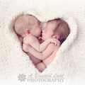 Adorable twins - babies photo