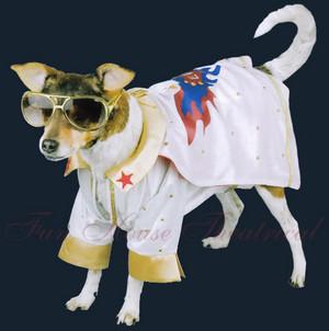 Elvis Presley dog