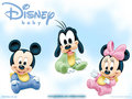 teste - disney-baby fan art