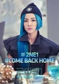 2NE1 Come Back Home - 2ne1 photo