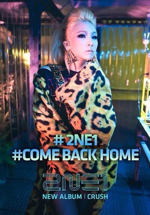 2ne1 come back home 2ne1 photo 36795422 fanpop - 2ne1 come back home wallpaper ...