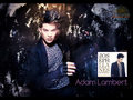 Adam Lambert - adam-lambert wallpaper