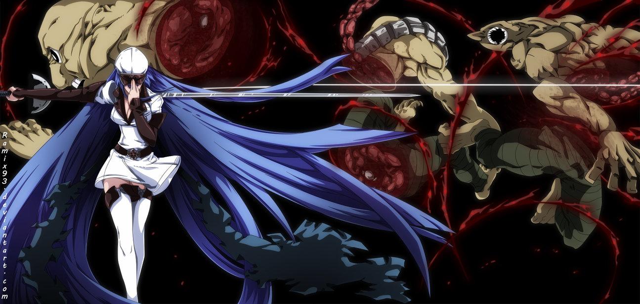 Wallpaper esdeath akame ga kill 4k anime 2604 -  26 Esdesene Empires Strongest Akame Ga Kill Photo