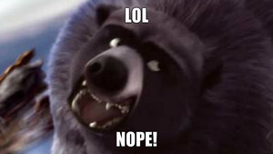 NOPE bear!!!