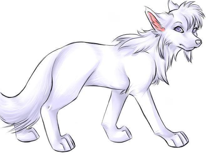Awesome White Anime Wolf