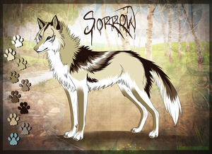 A serigala, wolf named Sorrow