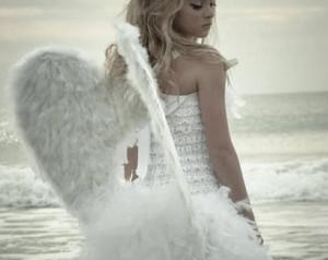 earth 天使