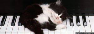 Cat sleeping on piano facebook timeline cover