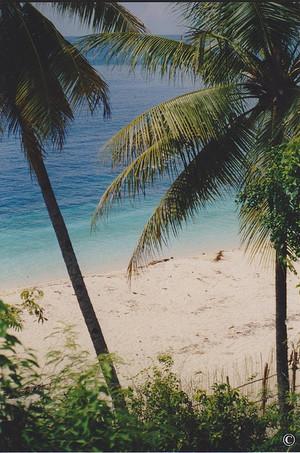 summer pantai