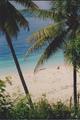 summer beach - beaches photo