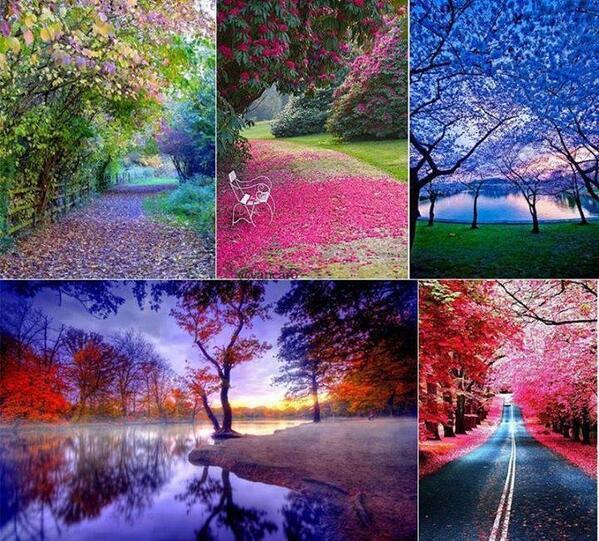 Beautiful Nature House: Beautiful Landscapes Images Beautiful Scenery Wallpaper